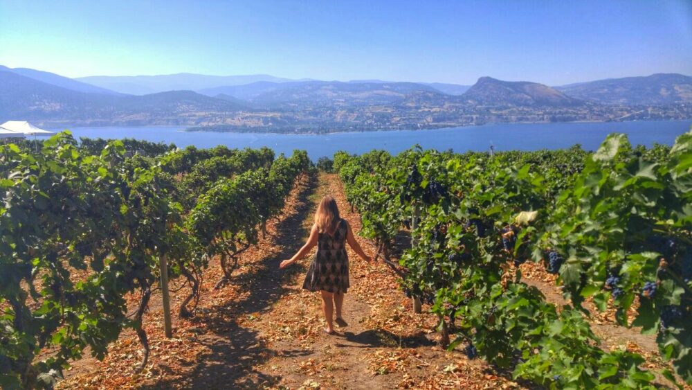 Gemma walking in vineyards with lake views behind