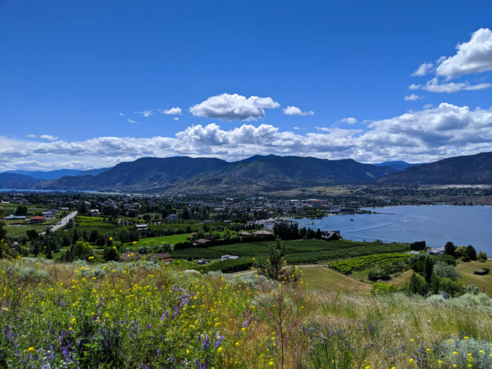 Elevated view looking down on Penticton downtown with vineyards and mountains in background