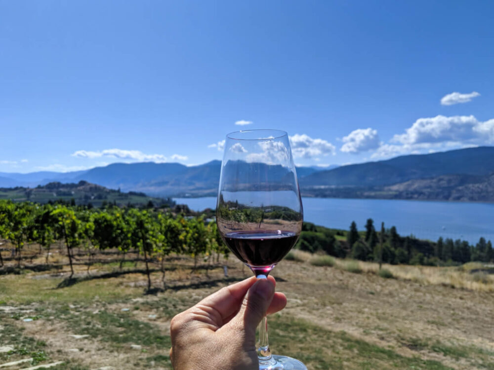 Hand holding wine glass with red wine in front of vineyards and lake views