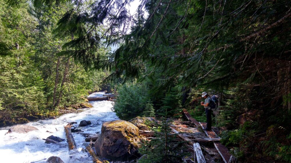 Hiking next to the creek, Valhalla Provincial Park