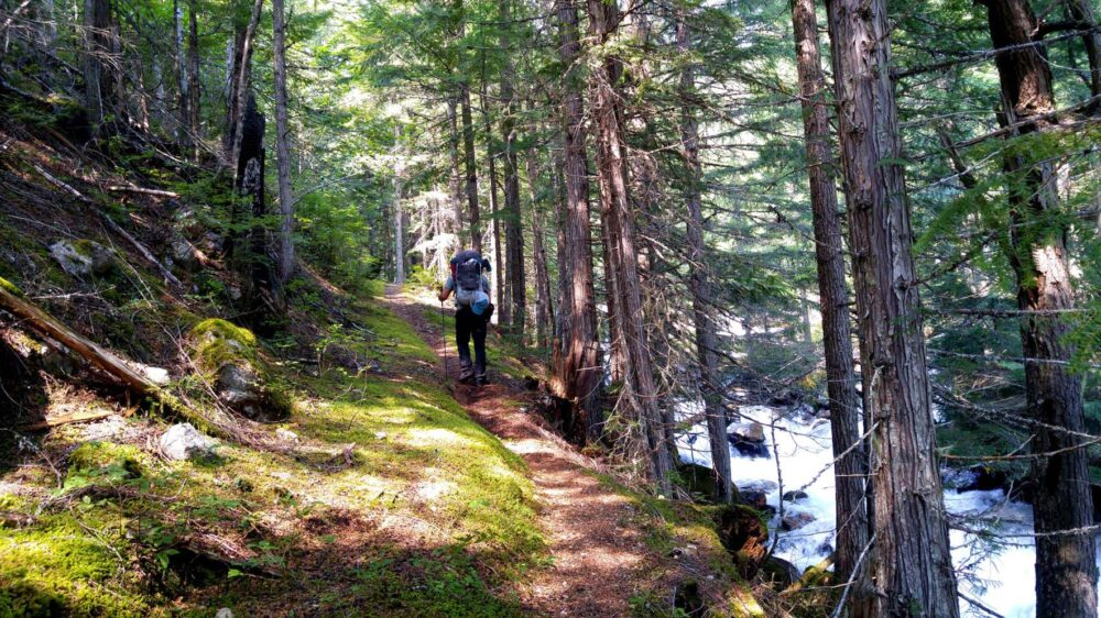 Hiking the Beatrice Lake Trail, Valhalla Provincial Park