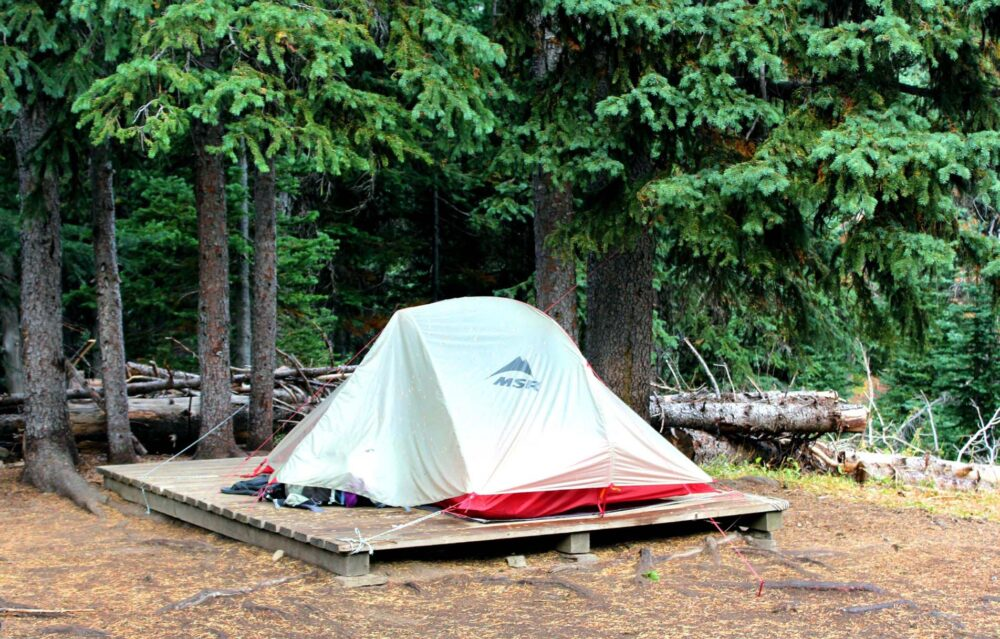 MSR tent on tent pad with forest behind