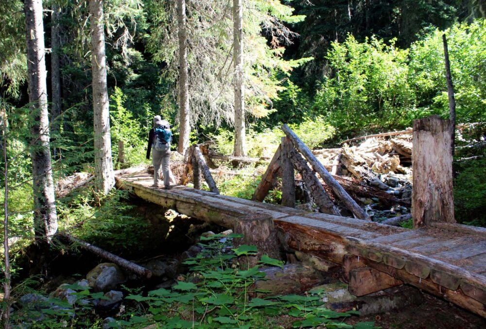 Gemma crossing log bridge on the Grainger Creek Trail