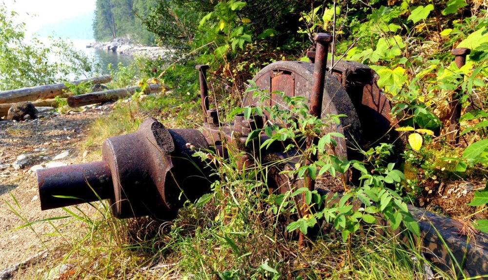 Rusting machinery with plants growing in and around