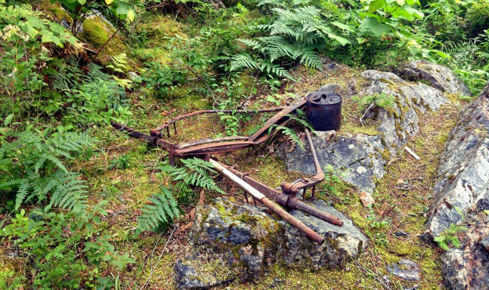 Leftover mining and logging equipment, Valhalla Provincial Park