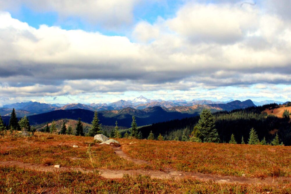 Endless mountain ranges in the distance from the Heather Trail