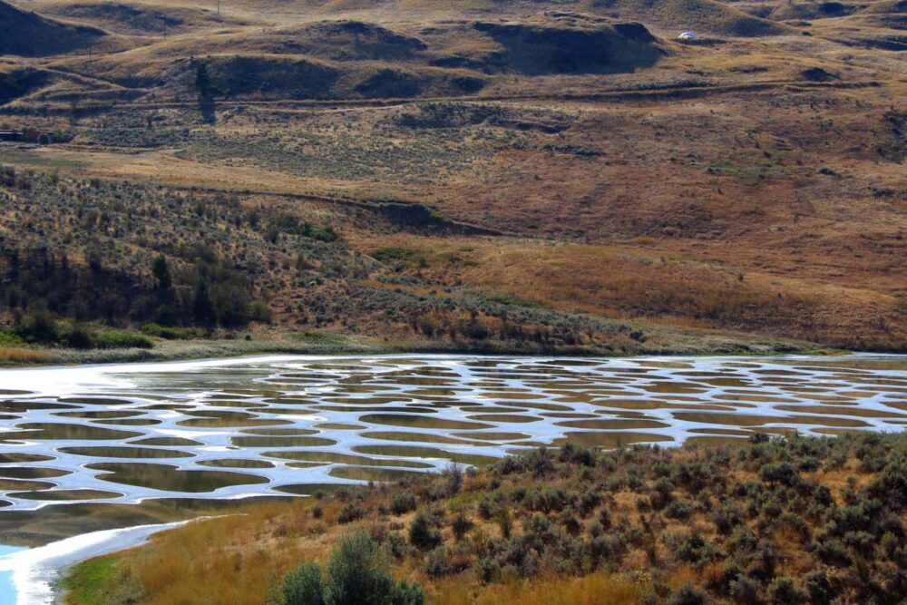 The patchwork of tiny lakes that make up Spotted Lake