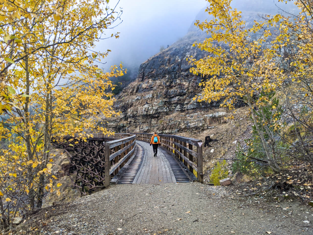 Gemma walking on wooden trestle bridge with trees on either side, with autumn colours