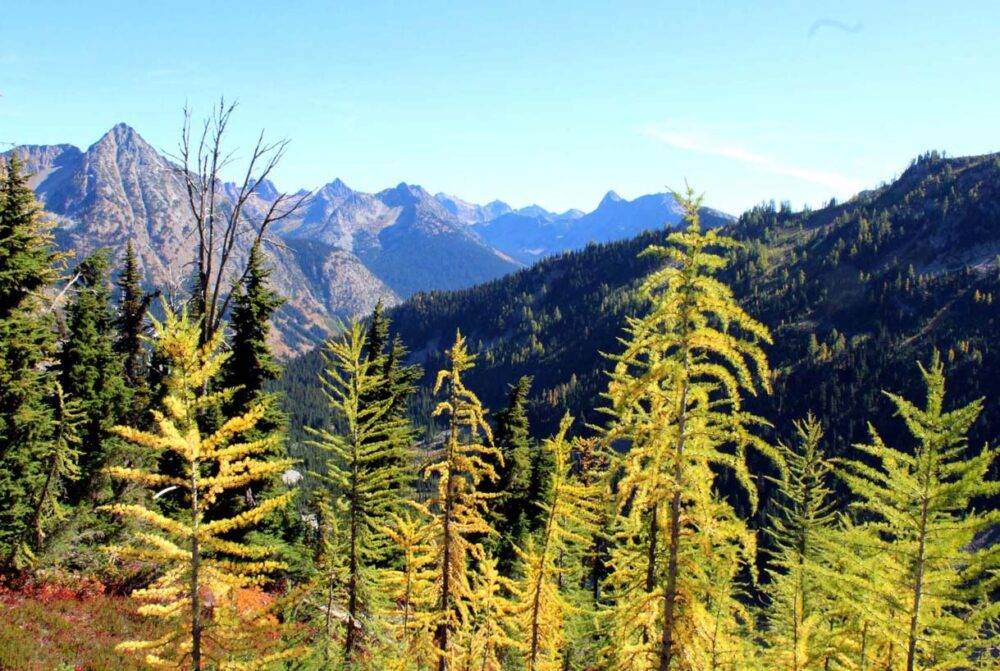 Hiking the Heather-Maple Pass Loop Trail, Washington, USA