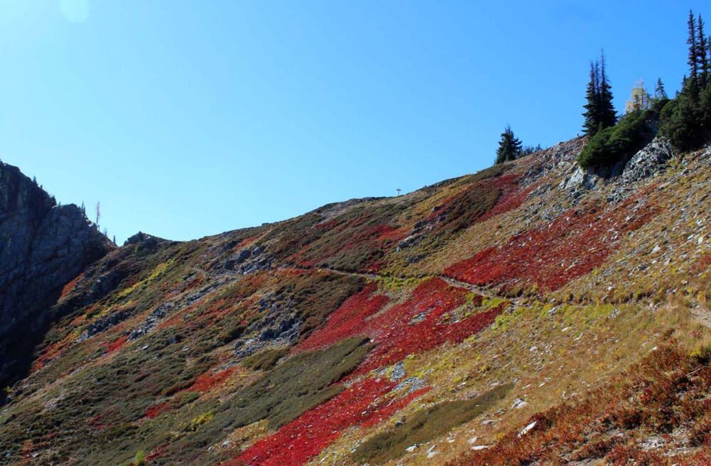 Hiking the Heather-Maple Pass Loop Trail, Washington, USA - autumn colours
