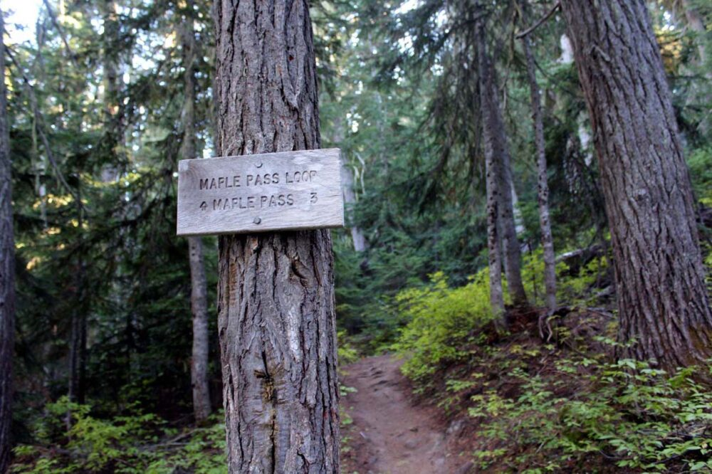 Hiking the Heather-Maple Pass Loop Trail, Washington, USA - signpost