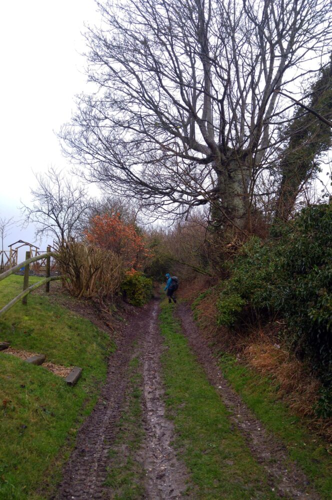 Great Stones Way long distance walking path - muddy paths
