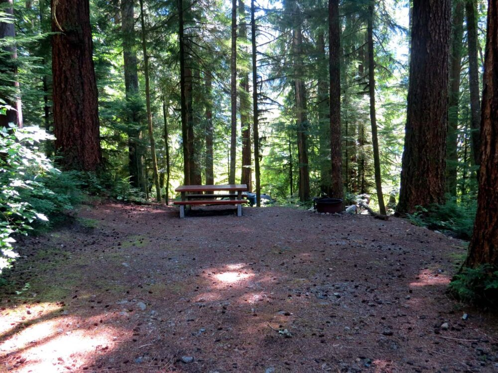 Nahmint Lake Recreational Site Vancouver Island offers free camping