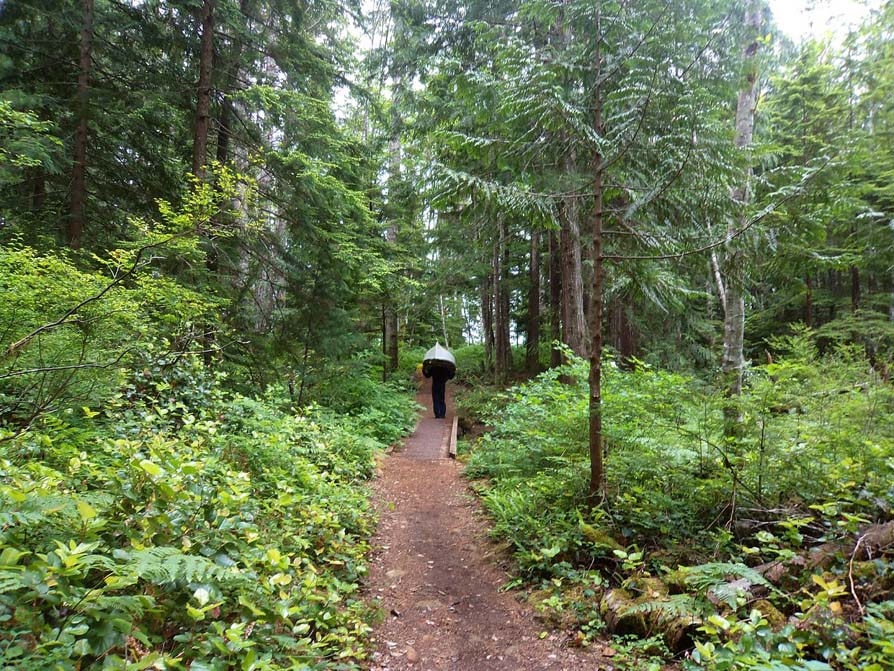 Portaging on the Sayward Forest Canoe Circuit
