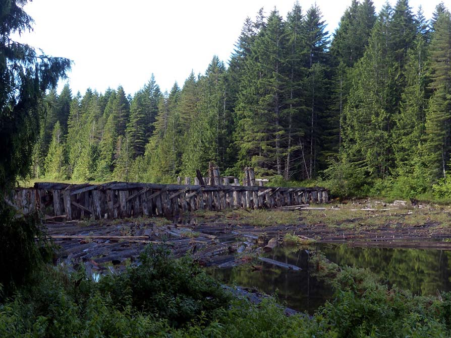 Old railway trestle, Sayward Forest Canoe Circuit on Vancouver Island