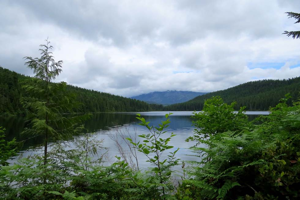 Surprise Lake, Sayward Forest Canoe Circuit