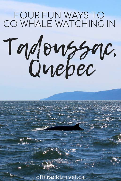 Click here to find out about four fun ways to go Whale Watching in Tadoussac, Quebec. 13 different species of whales visit the waters around this small town. It has to be one of the best places in the world to go whale watching!