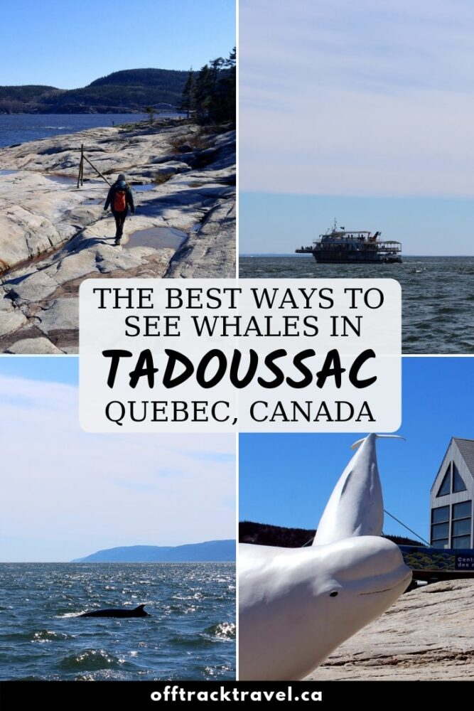 Tadoussac, Quebec, is one of the best places in the world to go whale watching. Not only can you go on a boat tour to see these majestic animals, but it is also possible to see them from shore! Click here for all the details. offtracktravel.ca