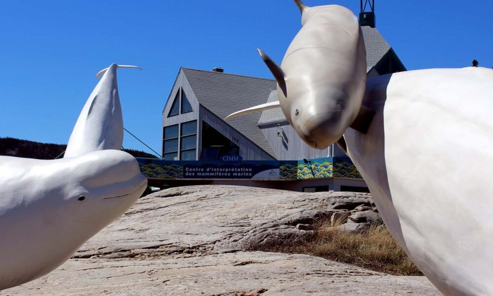 Whale sculptures outside of the Marine Mammal Interpretation Centre in Tadoussac, Quebec