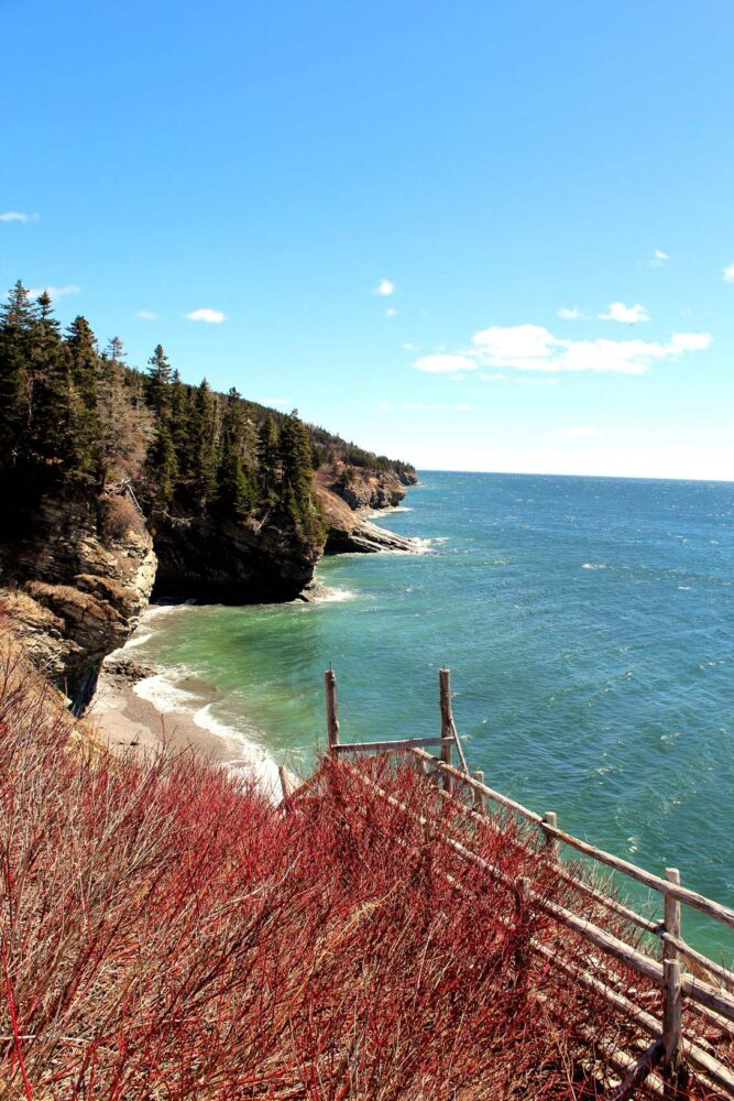 Rugged coastal scenery on Cap Gaspe hike, Forillon National Park