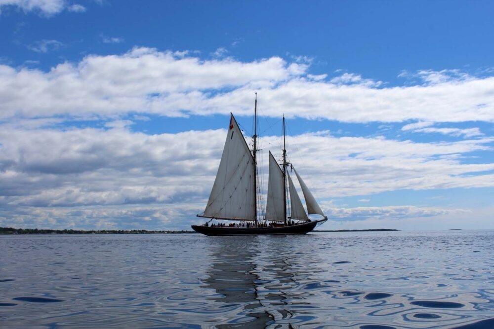 Bluenose II replica sailing on open ocean, with calm water and all sails up