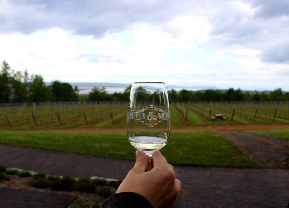 lightfoot and wolfville vineyard views nova scotia wineries