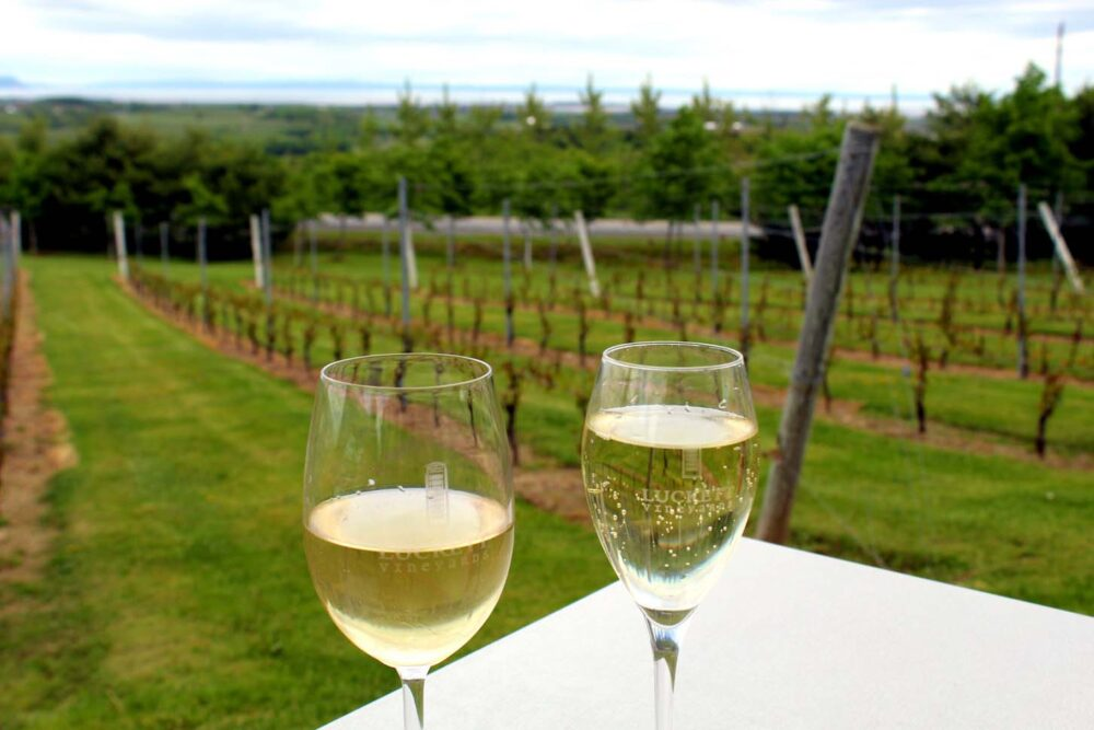 Magic Winery Bus tour at Luckett Vineyards, Wolfville