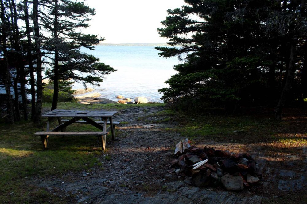 Picnic table and firepit surrounded by forest with ocean views at Ovens Natural Park in Nova Scotia