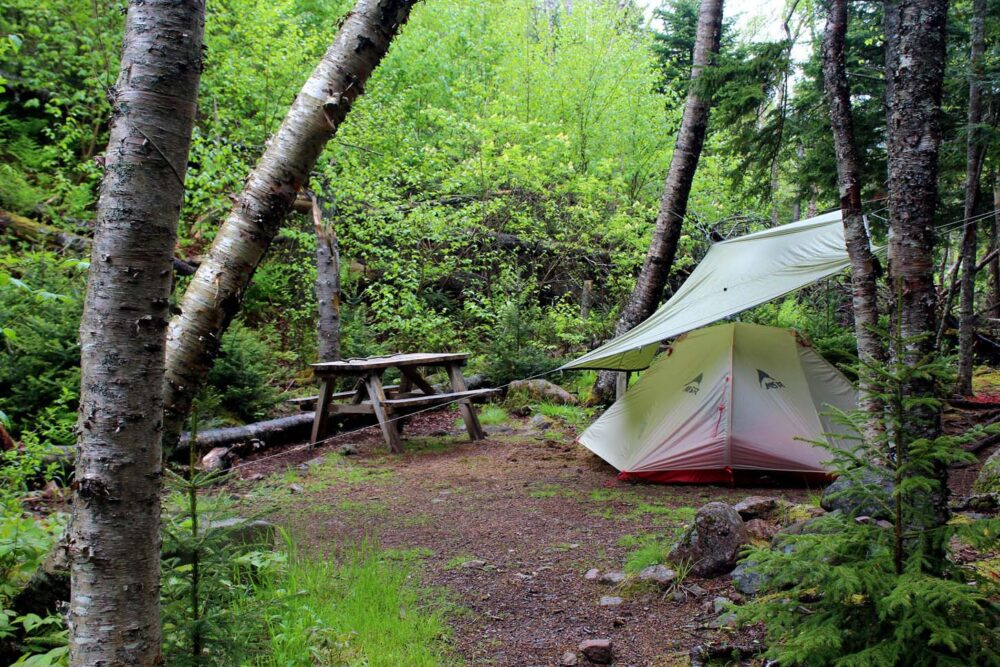 Tent, tarp and picnic table in forested campsite in Refugee Cove campground on the Cape Chignecto Coastal Trail