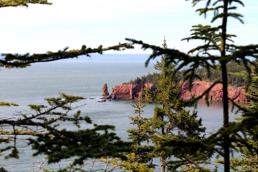 View through the trees of the very red Three Sisters coastal rock formation