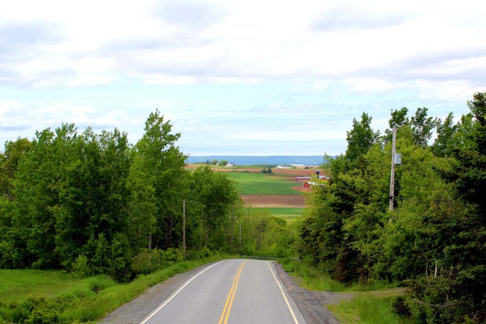 view from top deck magic wine bus tour wolfville