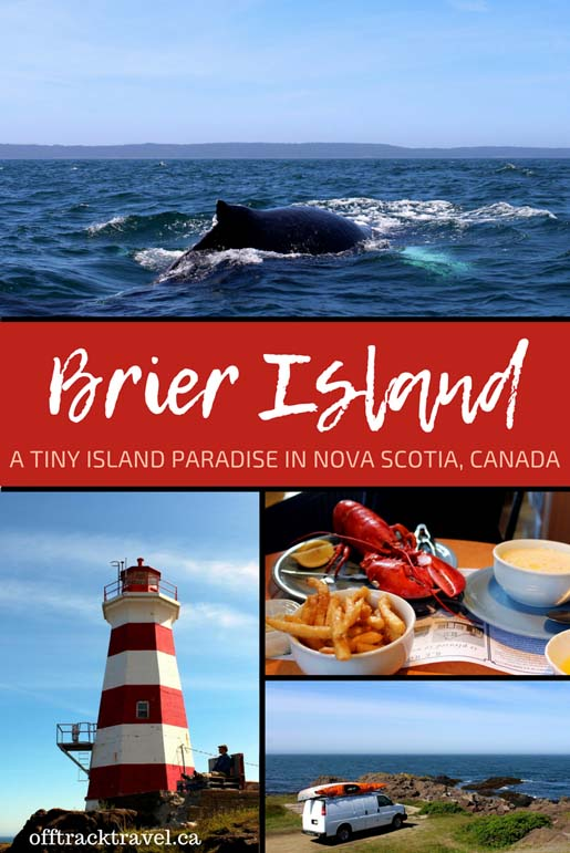 Brier Island is a tiny island paradise in Nova Scotia, Canada with amazing wildlife watching opportunities, beautiful hiking, tasty seafood and more! offtracktravel.ca