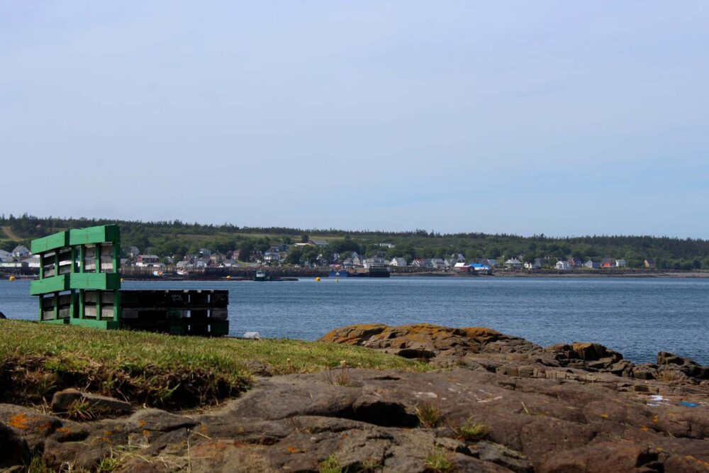 brier island views nova scotia st peters island