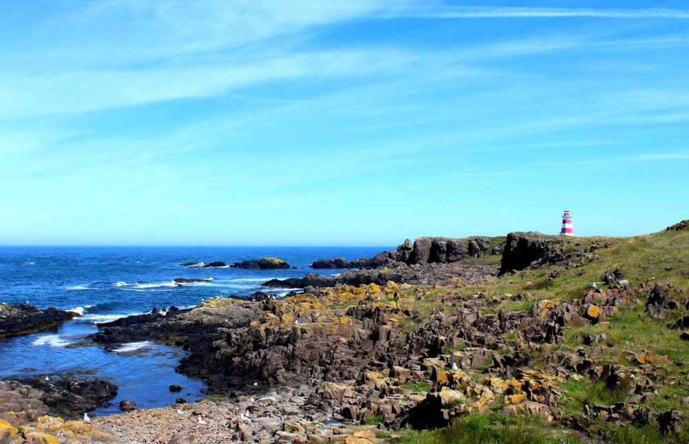 Basalt coastline around Brier Island's Western Lighthouse