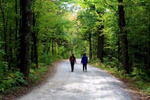 walking the trails in ferris provincial park campbellton ontario