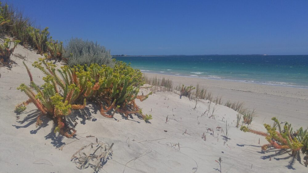 Coogee Beach Perth Western Australia