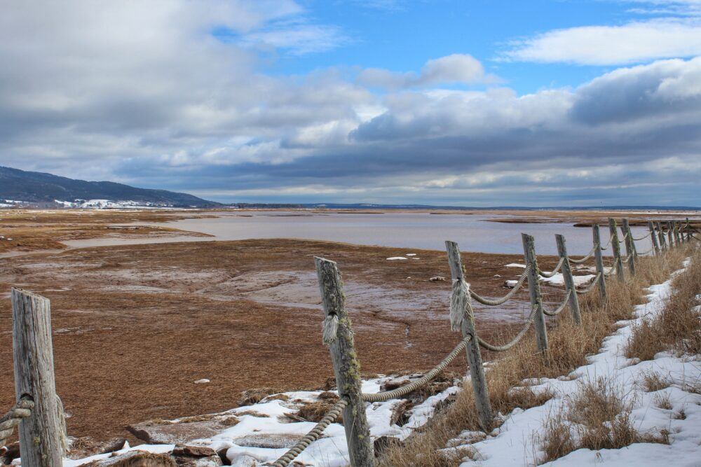 Fence in front of frozen coastal landscape