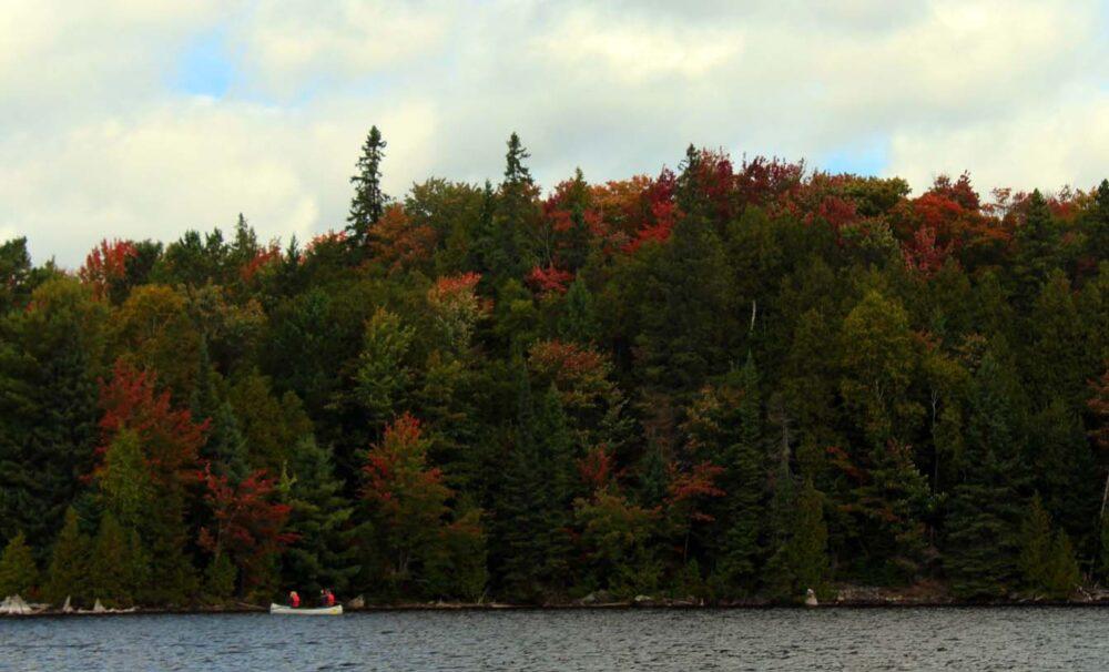 algonquin provincial park canoeists
