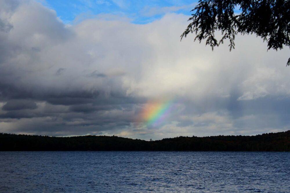 algonquin provincial park rainbow