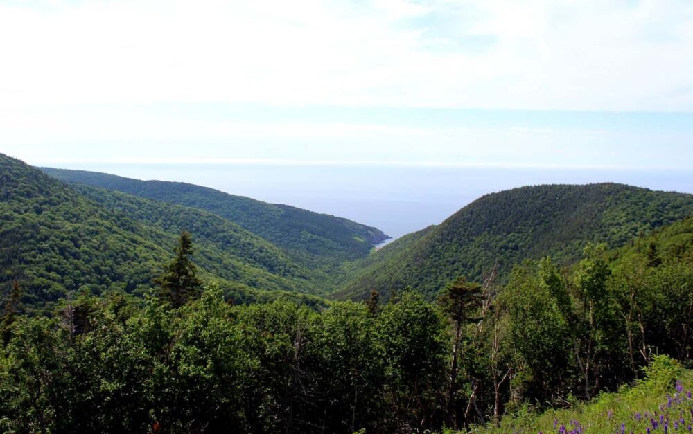 fishing cove lookout on cabot trail