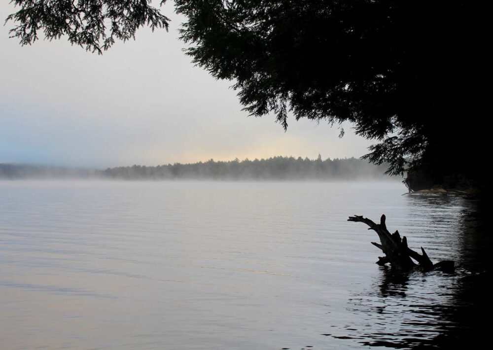 morning mist on burnt island lake algonquin