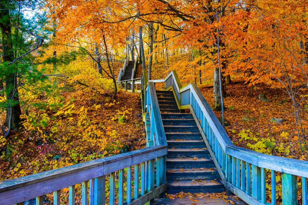 Gatineau Park in autumn