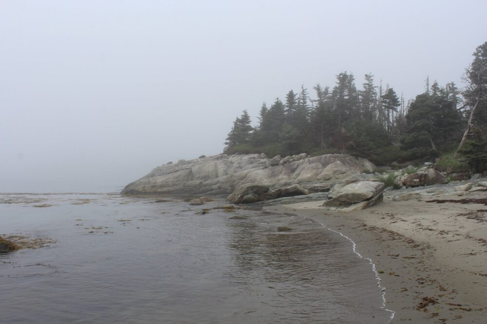 Sandy beach with rock headland, surrounded by fog