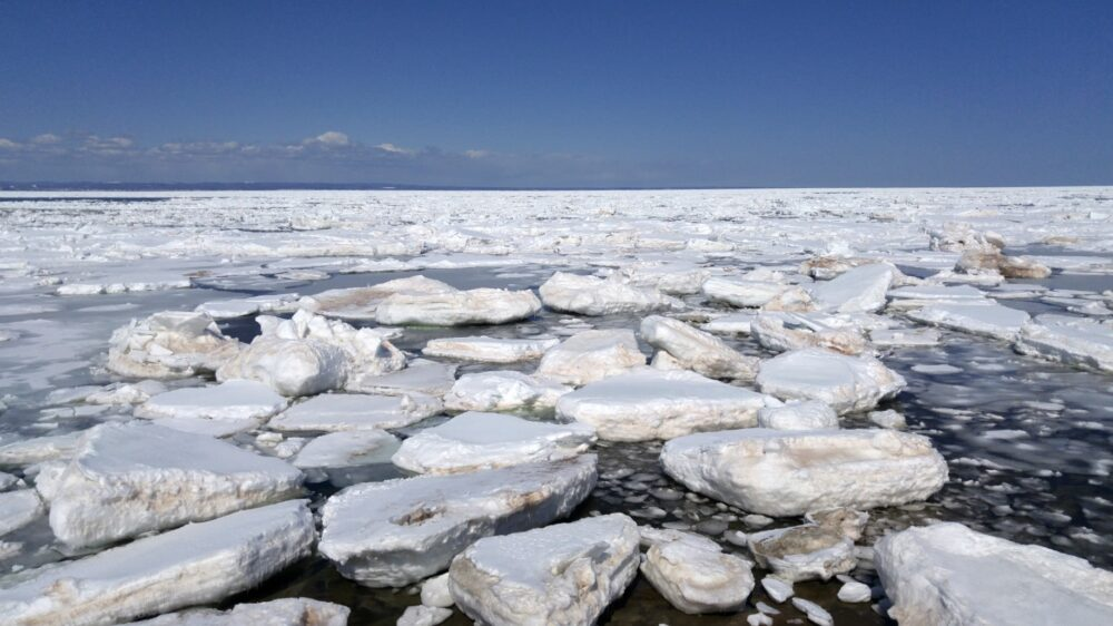 Ice breaking up on the ocean as far as the eye can see