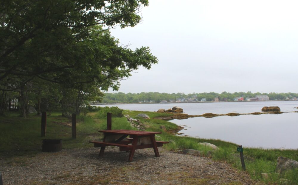 Waterfront campsite bordered by trees, with views of the town of Shelburne beyond
