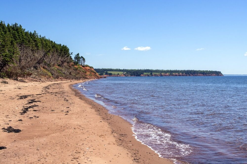 Ocean and pink tinged sand at Sallys Beach Provincial Park