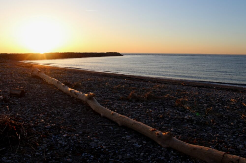 Sun setting behind wharf in Matane, view from beach with driftwood in foreground
