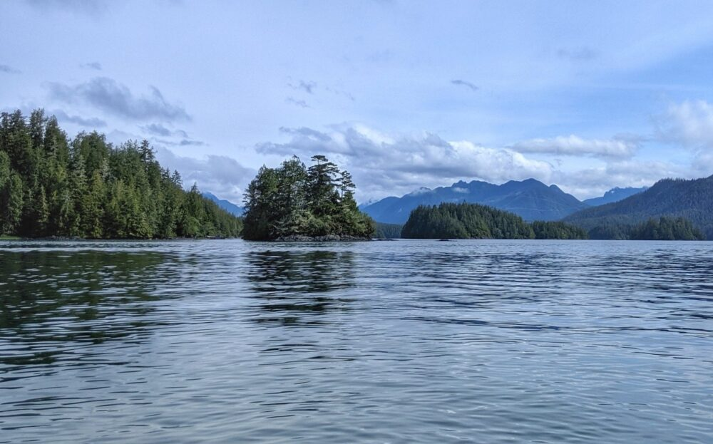 The mountains and forest of Clayoquot Sound from Tofino whale watching boat