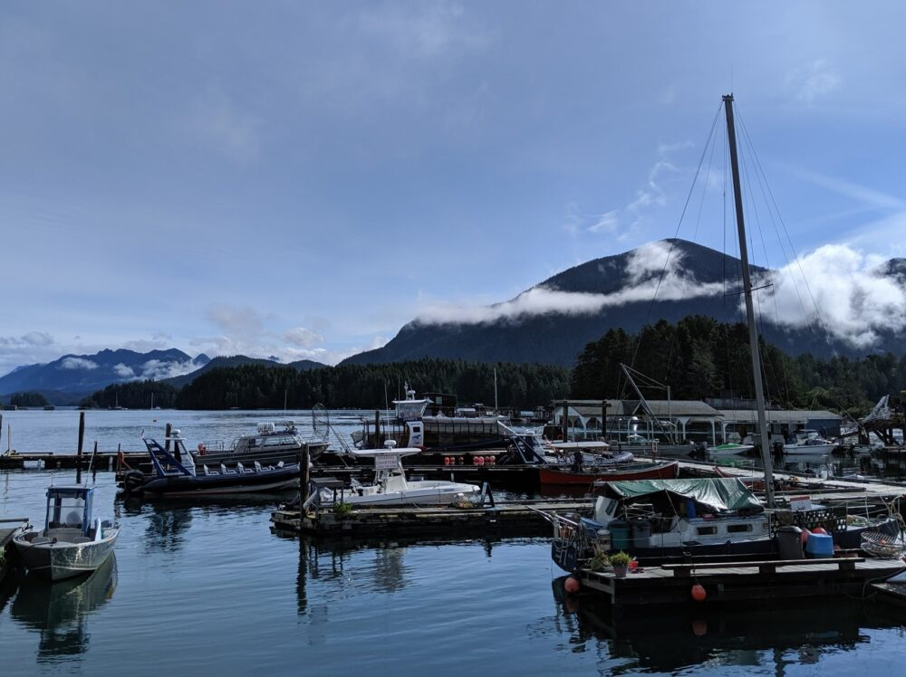 A marina in Tofino, British Columbia with misty mountain behind on blue sky day