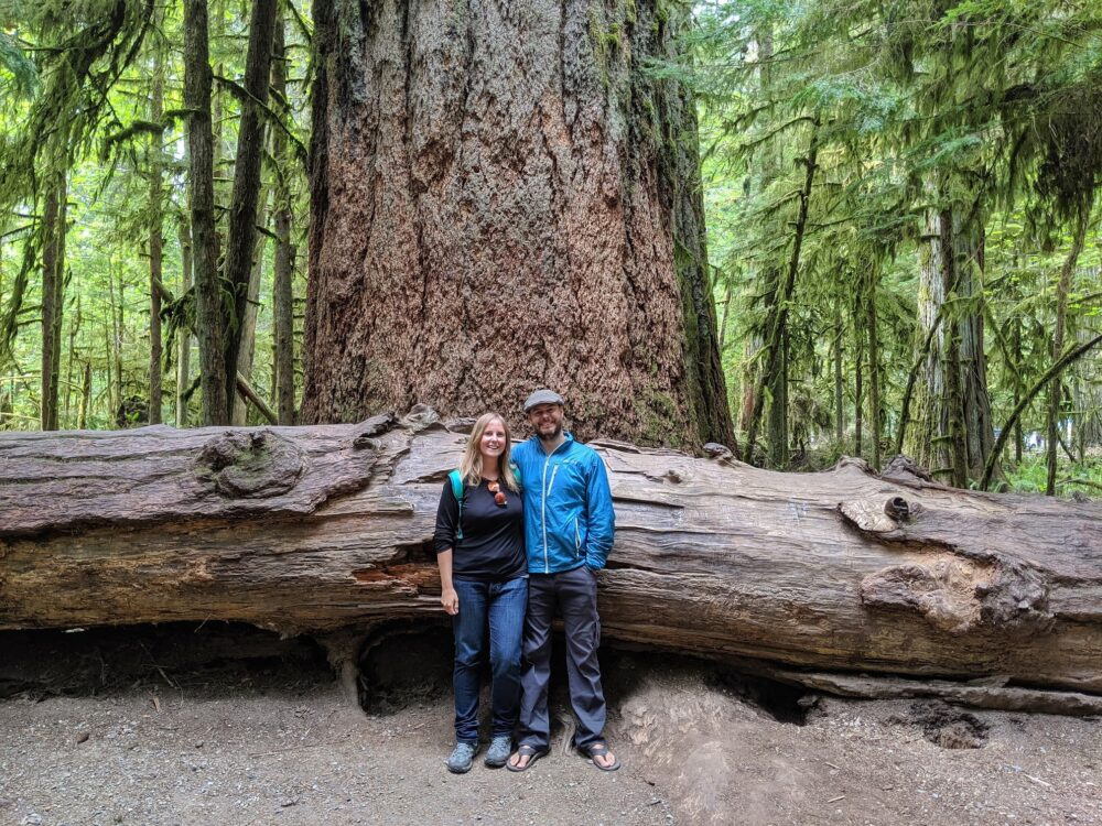 Couple standing in front of huge Douglas Fir tree trunk in Cathedral Grove